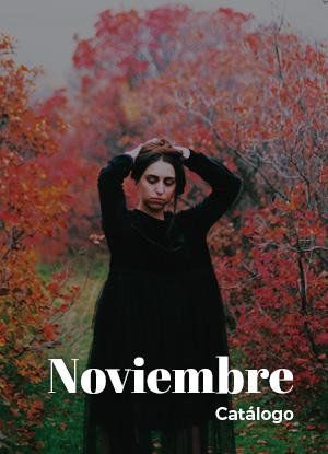 Noviembre Catalogo 2018